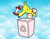 Reciclagem orgânica
