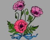 Desenho Umas papoilas pintado por lucelialu