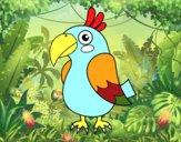 Papagaio tropical