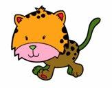 Cria de guepardo a correr