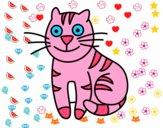 Gato simpático