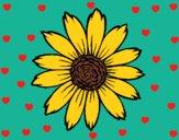 Desenho Girassol pintado por cledna