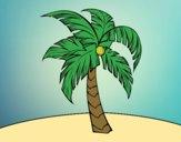 Uma palmeira