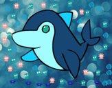 Golfinho-comum