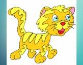 Gato com manchas