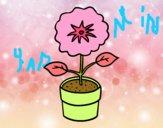 Uma flor de primavera