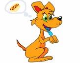 Cão com duas patas