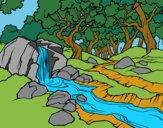 Desenho Paisagem da floresta com um rio pintado por Mandy