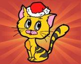 Um gato do Natal