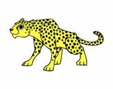 Desenho Um guepardo pintado por ameireles