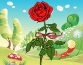 Desenho Uma rosa pintado por florbelinh