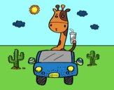 Girafa de condução