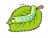 Desenho Lagarta a comer pintado por ameireles