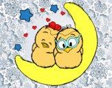 Pássaros do amor