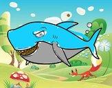 Tubarão dentuço