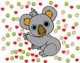 Um coala
