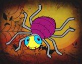 Desenho Aranha infantil pintado por onthefly