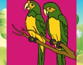 Desenho Louros pintado por wagnermoys
