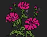 Desenho Conjunto floral pintado por Missim