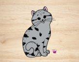 Desenho Gatinho adorável pintado por ImShampoo
