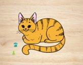 Desenho Gato novo pintado por ImShampoo