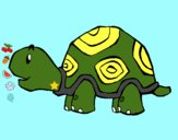 Tartaruga contente