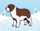 Desenho Cão São-bernardo pintado por ImShampoo