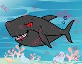 Desenho Tubarão dentuço pintado por repelstelt