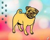 Desenho Cão Pug pintado por DeiDei