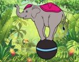 Desenho Elefante equilibrista pintado por amanda09