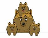 Desenho Familia Husky pintado por Tathyane