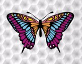 Desenho Borboleta papilio memnon pintado por Gisla