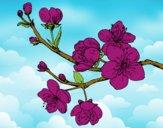 Desenho Filial da cereja pintado por Lile
