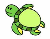 Tartaruga nadando