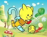 Gato futebol