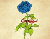Desenho Uma rosa pintado por bianca100