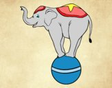 Desenho Elefante equilibrista pintado por Dalvamgcs