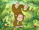 Desenho Equilibrista macaco pintado por Springtrap