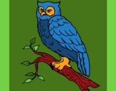 Desenho Coruja pintado por ceciliaz