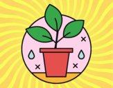 Desenho Agricultura biológica pintado por Craudia