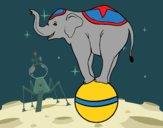 Desenho Elefante equilibrista pintado por ceciliaz