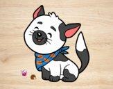 Desenho Gato com bandana pintado por ImShampoo