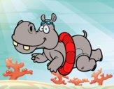 Desenho Hipopótamo natação pintado por jabuti