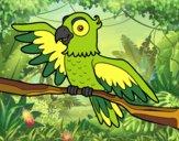 Desenho Papagaio en liberdade pintado por ImShampoo