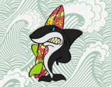 Desenho Tiburão surfista pintado por jabuti