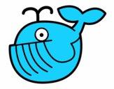 Baleia bebé