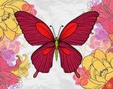 Desenho Borboleta tropical pintado por Hermione