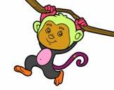 Macaco pendurado em um galho