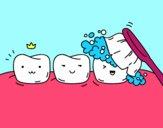 Os dentes