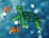 Desenho Tartaruga de mar com peixes pintado por BiancaNA
